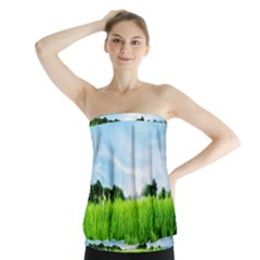 Green Landscape Green Grass Close Up Blue Sky And White Clouds Strapless Top