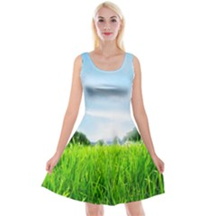 Green Landscape Green Grass Close Up Blue Sky And White Clouds Reversible Velvet Sleeveless Dress