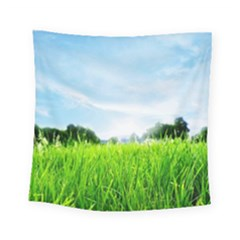Green Landscape Green Grass Close Up Blue Sky And White Clouds Square Tapestry (small)
