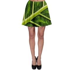 Leaf Dark Green Skater Skirt