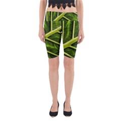 Leaf Dark Green Yoga Cropped Leggings