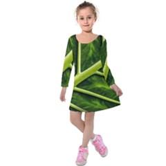 Leaf Dark Green Kids  Long Sleeve Velvet Dress
