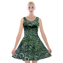 Morning Dew Velvet Skater Dress