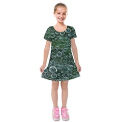 Morning Dew Kids  Short Sleeve Velvet Dress