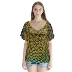 Peacock Bird Feather Color Flutter Sleeve Top