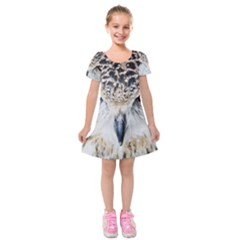 Owl Face Kids  Short Sleeve Velvet Dress