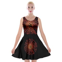 Red Flower Blooming In The Dark Velvet Skater Dress