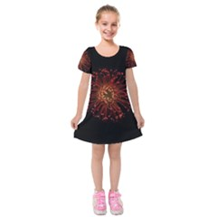 Red Flower Blooming In The Dark Kids  Short Sleeve Velvet Dress