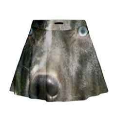 Blue Merle Catahoula Mini Flare Skirt