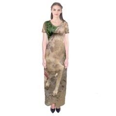 Tan Merle  Catahoula Short Sleeve Maxi Dress
