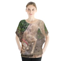Tan Merle  Catahoula Blouse