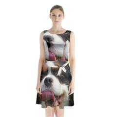 Cav Sleeveless Chiffon Waist Tie Dress