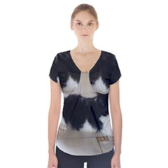 Cavalier King Charles Spaniel Tri Puppy Short Sleeve Front Detail Top