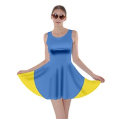 Ukrainian Air Force Roundel Skater Dress