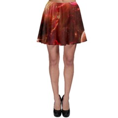 Space Red Skater Skirt
