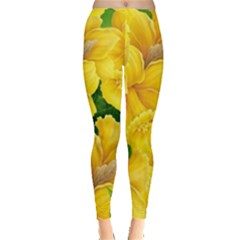 Springs First Arrivals Leggings