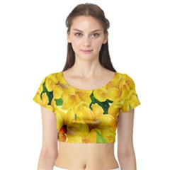 Springs First Arrivals Short Sleeve Crop Top (tight Fit)