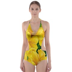 Springs First Arrivals Cut Out One Piece Swimsuit