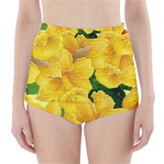 Springs First Arrivals High Waisted Bikini Bottoms
