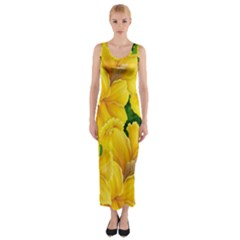 Springs First Arrivals Fitted Maxi Dress