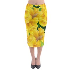 Springs First Arrivals Midi Pencil Skirt