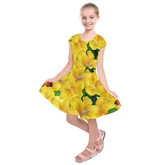 Springs First Arrivals Kids  Short Sleeve Dress