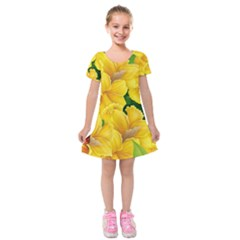 Springs First Arrivals Kids  Short Sleeve Velvet Dress