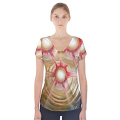 The Painters Universe Short Sleeve Front Detail Top