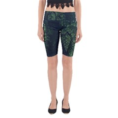 Abstract Art Background Biology Yoga Cropped Leggings