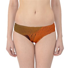 Abstraction Color Closeup The Rays Hipster Bikini Bottoms