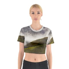 Agriculture Clouds Cropland Cotton Crop Top