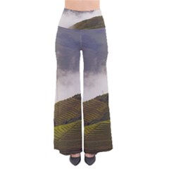 Agriculture Clouds Cropland Pants