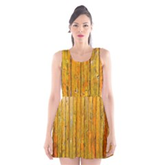 Background Wood Lath Board Fence Scoop Neck Skater Dress