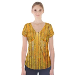 Background Wood Lath Board Fence Short Sleeve Front Detail Top