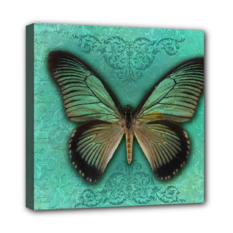 Butterfly Background Vintage Old Grunge Mini Canvas 8  X 8