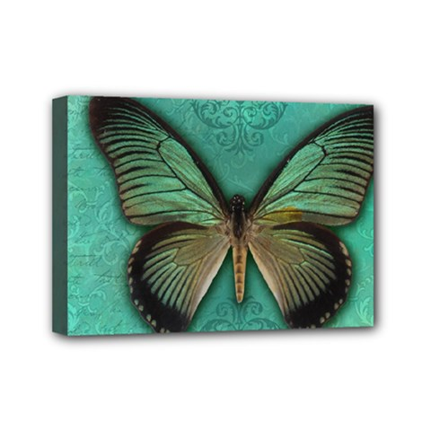 Butterfly Background Vintage Old Grunge Mini Canvas 7  X 5