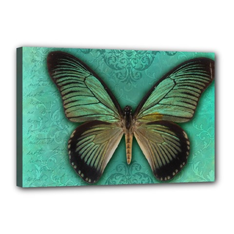 Butterfly Background Vintage Old Grunge Canvas 18  X 12