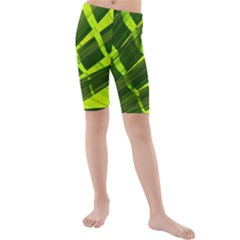 Frond Leaves Tropical Nature Plant Kids  Mid Length Swim Shorts