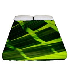 Frond Leaves Tropical Nature Plant Fitted Sheet (king Size)