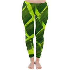 Frond Leaves Tropical Nature Plant Classic Winter Leggings