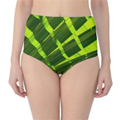 Frond Leaves Tropical Nature Plant High Waist Bikini Bottoms