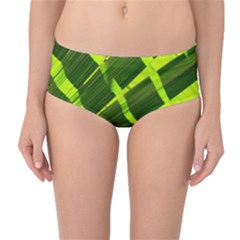 Frond Leaves Tropical Nature Plant Mid Waist Bikini Bottoms