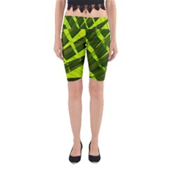 Frond Leaves Tropical Nature Plant Yoga Cropped Leggings