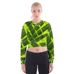 Frond Leaves Tropical Nature Plant Women s Cropped Sweatshirt
