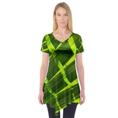 Frond Leaves Tropical Nature Plant Short Sleeve Tunic