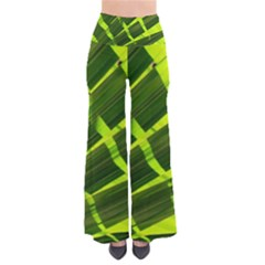 Frond Leaves Tropical Nature Plant Pants