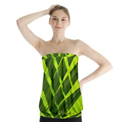 Frond Leaves Tropical Nature Plant Strapless Top