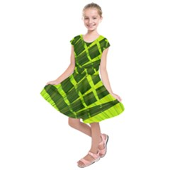 Frond Leaves Tropical Nature Plant Kids  Short Sleeve Dress