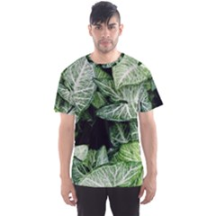 Green Leaves Nature Pattern Plant Men s Sport Mesh Tee