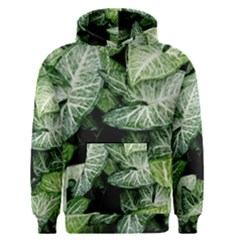 Green Leaves Nature Pattern Plant Men s Pullover Hoodie